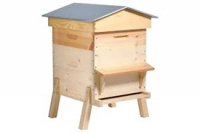 Comment bien choisir sa ruche